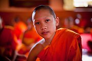 24 JUNE 2011 - CHIANG MAI, THAILAND: A novice monk at Wat Phra Singh in Chiang Mai, Thailand. Wat Phra Singh is the most revered Buddhist temple in Chiang Mai because it houses the Phra Singh (Lion Buddha). The exact origin of the Buddha is unknown though it is known to have resided in Buddhist temples in Sukothai, Ayuthaya, Chiang Rai and Luang Prabang before coming to Chiang Mai in approximately 1360. Most Thai boys join the Buddhist clergy, called the Sangha, sometimes for only a few weeks, during their teenage years.   PHOTO BY JACK KURTZ