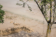 Metaponto, Basilicata, Italia, 2013<br /> Area archeologica di Metaponto sommersa dall'acqua dopo l'alluvione che ha colpito la fascia ionica della Basilicata<br /> <br /> Metaponto, Basilicata, Italy, 2013<br /> Metaponto archaeological area under water after the floods that hit the Ionian coast of Basilicata