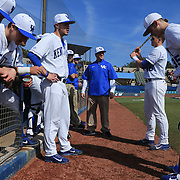 Members of The University of Kentucky gather in their dugout before the start of their season opener against The University of Virginia. The university of Kentucky faced the University of Virginia in the opening game of the Hughes Brothers Challenge Friday February 14, 2014 at Brooks Field on the campus of the University of North Carolina at Wilmington in Wilmington, N.C. (Jason A. Frizzelle)
