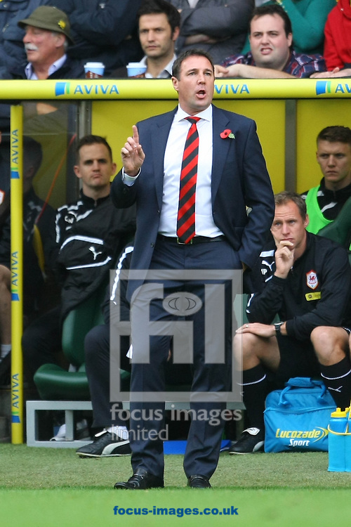 Picture by Paul Chesterton/Focus Images Ltd +44 7904 640267<br /> Cardiff Manager Malky Mackay during the Barclays Premier League match at Carrow Road, Norwich.