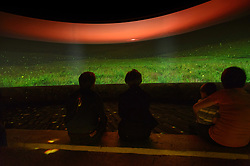 Visitors to the Flint Hills Discovery Center watch the 15-minute 'immersive experience' film which has special effects such as smoke, fog, mist and wind which appear in the theater as the high definition film is shown on a large panoramic screen at the $24.4 million center, located in Manhattan, Kansas. This scene in the movie depicts fireflies (also known as lightning bugs) flickering in the early evening light on the tallgrass prairie. Through interactive exhibits, Flint Hills Discovery Center visitors can explore the science and cultural history of the last stand of tallgrass prairie in North America – one of the world's most endangered ecosystems. Other attractions of the Flint Hills Discovery Center include: an 'underground forest' depicting the long roots of prairie plants including the 7-foot roots of bluestem prairie grass; explanations of importance of fire to the Flint Hills tallgrass prairie; and exhibits about the people and cultural history of the Flint Hills. The Flint Hills Discovery Center was designed by the museum architectural firm Vern Johnson Inc. with interpretive design and planning by Hilferty and Associates. The 34,900 square foot science and history learning center features permanent interactive exhibits, temporary exhibits, and areas for community programs and outreach activities. The Flint Hills Discovery Center received a LEED green building certification for their environmental design and energy efficiency, including their lighting and geothermal heating/cooling system.