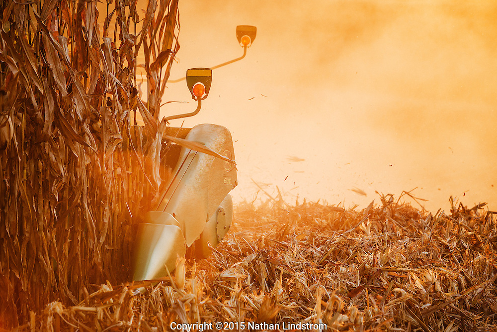 Combine harvesting corn in Iowa.<br />