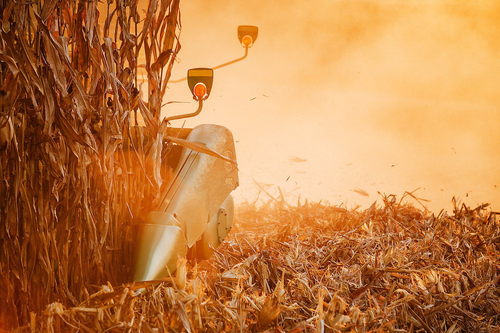 Combine harvesting corn in Iowa.<br /> Photographed by editorial lifestyle Texas photographer Nathan Lindstrom