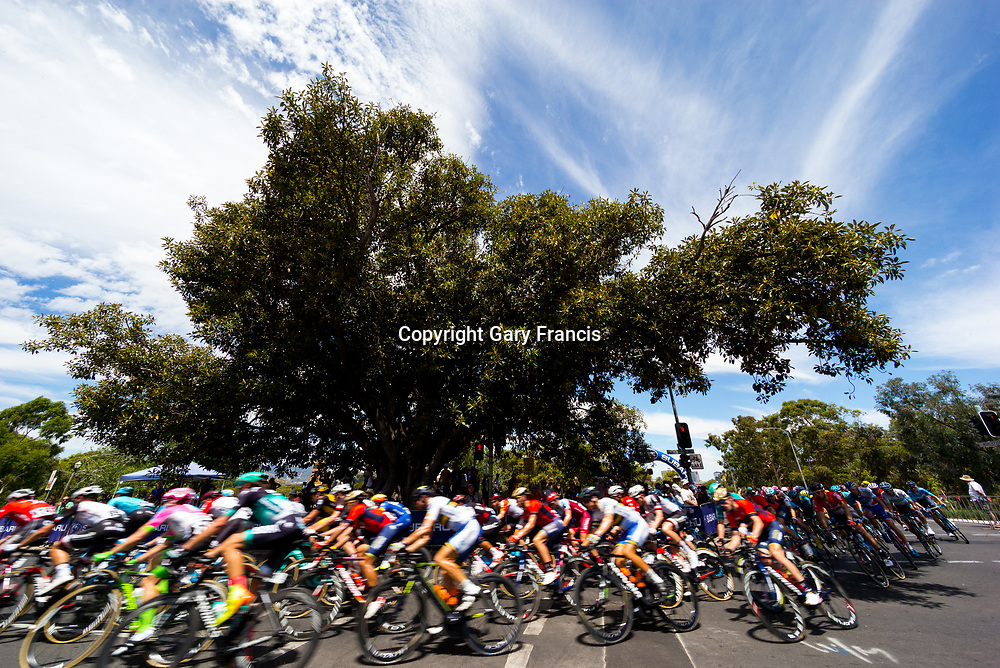 The Peloton at Stage 6, Adelaide City Circuit, of the Tour Down Under, Australia on the 21 of January 2018 ( Credit Image: © Gary Francis / ZUMA WIRE SERVICE )