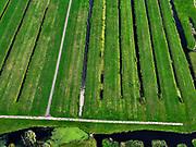 Nederland, Zuid-Holland, Ouderkerk aan de IJssel, 14-09-2019; Zicht op veenweidegebied van de Krimpenerwaard. Ten zuidwesten van Stolwijk, Achterwetering met betonnen weg voor vee.Polders tussen Ouderkerk en Stolwijk.<br /> View on peat meadow polders west of Stolwijk, South Holland.<br /> <br /> luchtfoto (toeslag op standard tarieven);<br /> aerial photo (additional fee required);<br /> copyright foto/photo Siebe Swart