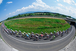 Peloton near Otocec during Stage 4 from Brezice to Novo mesto (155,8 km) of cycling race 20th Tour de Slovenie 2013,  on June 16, 2013 in Slovenia. (Photo By Vid Ponikvar / Sportida)