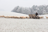 Scottish Borders sheep farmer