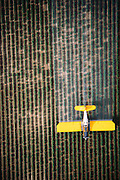 Crop dusting. Spraying pesticides on agricultural crops in California.