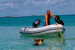 Pig Island - Bahamas