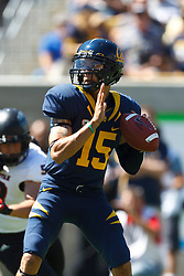 BERKELEY, CA - SEPTEMBER 08: Quarterback Zach Maynard #15 of the California Golden Bears stands in the pocket against the Southern Utah Thunderbirds during the first quarter at Memorial Stadium on September 8, 2012 in Berkeley, California. The California Golden Bears defeated the Southern Utah Thunderbirds 50-31. (Photo by Jason O. Watson/Getty Images) *** Local Caption *** Zach Maynard