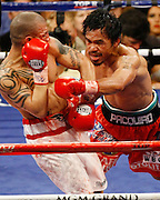 Manny Pacquiao backs up Miguel Angel Cotto of Puerto Rico in their WBO Welterweight Championship fight at the MGM Grand Garden Arena on November 14, 2009 in Las Vegas, Nevada. Pacquiao won his seventh world title in as many divisions