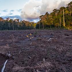 """""""Terra seca (Paisagem) fotografado em Linhares, Espírito Santo -  Sudeste do Brasil. Bioma Mata Atlântica. Registro feito em 2016.<br /> <br /> <br /> <br /> ENGLISH: Dry land photographed  in Linhares, Espírito Santo - Southeast of Brazil. Atlantic Forest Biome. Picture made in 2016."""""""