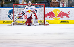 09.04.2019, Eisarena, Salzburg, AUT, EBEL, EC Red Bull Salzburg vs Vienna Capitals, Halbfinale, 6. Spiel, im Bild Stephen Michalek (EC Red Bull Salzburg) // during the Erste Bank Icehockey 6th semifinal match between EC Red Bull Salzburg vs Vienna Capitals at the Eisarena in Salzburg, Austria on 2019/04/09. EXPA Pictures © 2019, PhotoCredit: EXPA/ JFK