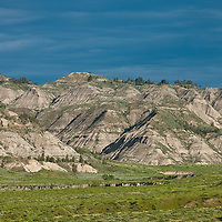 entrenched bullwacker creek and badlands in the  umrbnm, russel country, montana, usa, upper missouri river breaks national monument, russell
