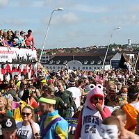 Aalborg Karneval - Stjerneparaden 2014