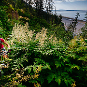 Heather Goodrich rides along the Turnagain Arm in 24 hour summer sunlight at low tide near Hope, Alaska.
