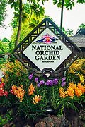 National Orchid Garden at the Singapore Botanic Gardens, Singapore, Republic of Singapore