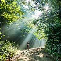 A mountain biker rides through sun rays on a White Mountain National Forest road through the Notch.<br />