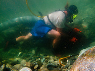Steve nown as Sluice Box living, panning, and dredging the river when he  diving  for gold at the East Fork River in California, August Saturday  8.09