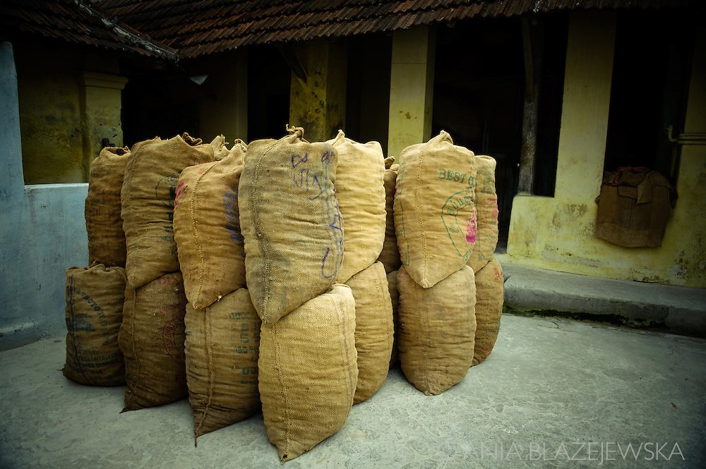 India, Kerala. Bags full of ginger in ginger factory.<br />