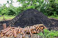 Making charcoal near Puerto Esperanza, Pinar del Rio, Cuba.