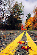 Autumn leaves in on a rural road in Western Massachusetts. New England, USA.