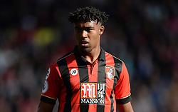 Jordon Ibe of Bournemouth - Mandatory by-line: Alex James/JMP - 22/10/2016 - FOOTBALL - Vitality Stadium - Bournemouth, England - AFC Bournemouth v Tottenham Hotspur - Premier League