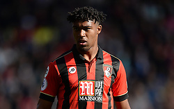 Jordon Ibe of Bournemouth - Mandatory by-line: Alex James/JMP - 22/10/2016 - FOOTBALL - Vitality Stadium - Bournemouth, England - AFC Bournemouth v Tottenham Hotspur - Premier League