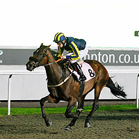 Punk and Luke Morris winning the 8.20 race