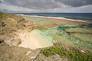 Coral Garden, Aitu Island, Cook Islands, Polynesia
