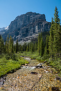 Stanley Glacier Trail, Kootenay National Park, British Columbia, Canada.