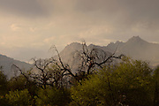 A light Spring rain showers the Santa Catalina Mountains, Sonoran Desert, Tucson, Arizona, USA.