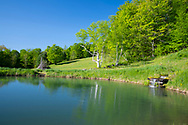 A small waterfall running into a pond in spring at Firefly Farm Firefly Farm, Hauverville, New York, U.S.A.