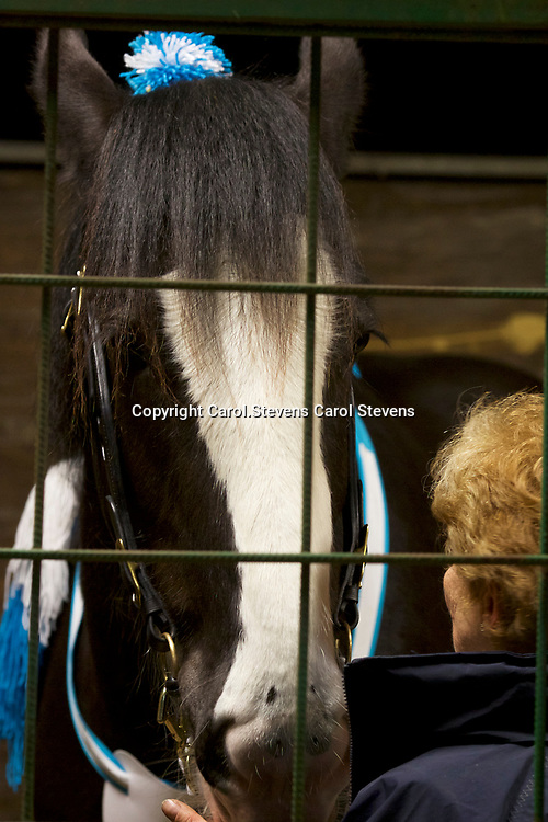 Shire Horse Society Spring Show 2017  Sights and  people around the showground<br />