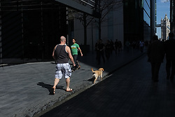 © LONDON NEWS PICTURES 2011. Man's dog cools off in gully on warmest day of 2011 so far near Tower Bridge in London.