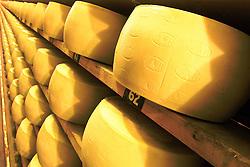 O empresário Raul A. Random na sua fábrica de queijos GRAN FORMAGGIO na cidade de Vacaria, a 237 km de Porto Alegre. FOTO: Jefferson Bernardes/Preview.com
