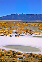 A frozen pond at San Luis State Park, with the Sangre De Cristo Mountains in the distance.  Colorado.