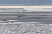 The bore tide rolls in on Turnagain Arm at Windy Point outside Anchorage, Alaska.