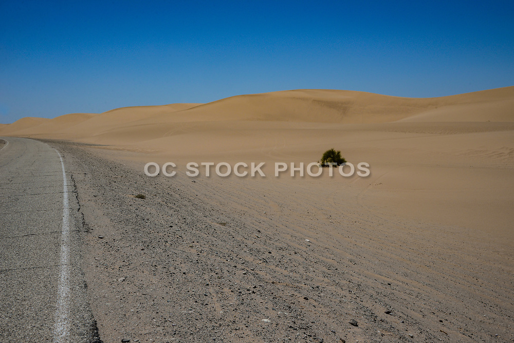 Imperial Sand Dunes State Recreation Park
