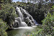 owharoa falls - this side view sees water cascade into the lush oasis surrounded by tree ferns into the lagoon below, at karangahake, bay of plenty, new zealand