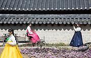Spring in Jeonju, South Korea, March 15, 2016. Photo by Lee Jae-Won (SOUTH KOREA)  www.leejaewonpix.com