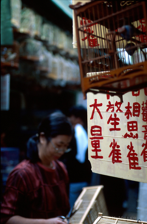 A woman working at the Yuen Po Street Bird Garden in Kowloon, Hong Kong, China.
