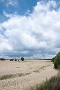 Landschaft mit Getreidefeld im südlichen Odenwald bei Mosbach, Baden-Württemberg, Deutschland