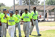 The Mulos and the Cubs, teams with Mexican League baseball, play a championship game at Mission Manor Park, Tucson, Arizona, USA.