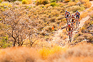 VILLIERSDORP, SOUTH AFRICA -Burry Stander and Christoph Sauser, stage winners and race leaders pass Treks Bart Brentjies and Chris Jongewaard  during stage two, of the Absa Cape Epic Mountain Bike Stage Race held in Villiersdorp on the 23 March 2009 in the Western Cape, South Africa..Photo by Sven Martin  /SPORTZPICS