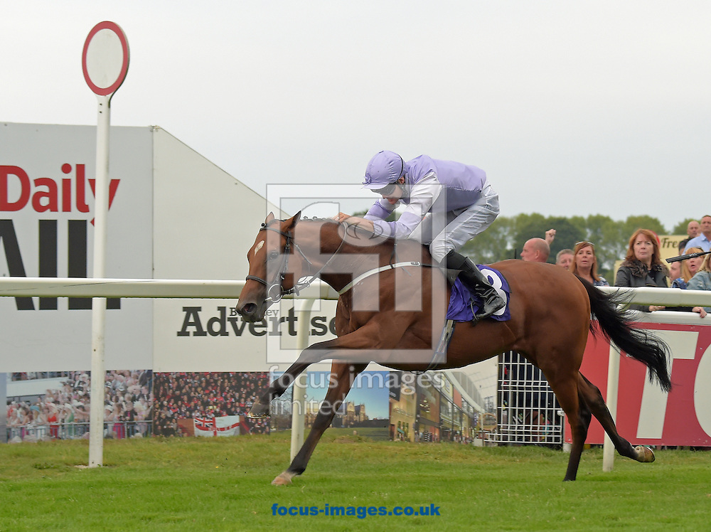 Dolphin Vista ridden by David Nolan (mauve with white half sleeves) wins totepool Live Info Download The App handicap stakes during the Totepool Beverley Bullet Day at Beverley Racecourse, Yorkshire.<br /> Picture by Martin Lynch/Focus Images Ltd 07501333150<br /> 27/08/2016
