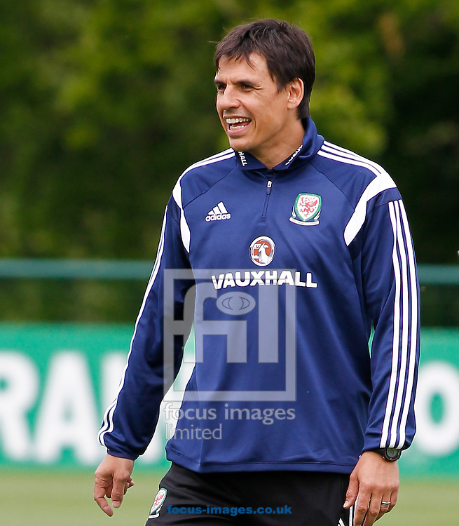 Chris Coleman during the Wales Training session at the Vale Resort, Hensol<br /> Picture by Mike Griffiths/Focus Images Ltd +44 7766 223933<br /> 08/06/2015