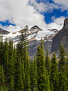 Looking over Lake O'Hara to Mount Lefroy and Oesa Glacier. Yoho National Park, British Columbia, Canada.