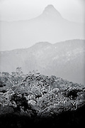 Black & White photographs from Sri Lanka<br /> <br /> View of Adams peak from Horton Plains NP.