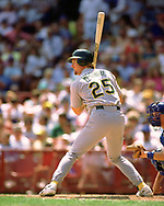 MILWAUKEE - 1990:  Mark McGwire of the Oakland Athletics bats during an MLB game against the Milwaukee Brewers at County Stadium in Milwaukee, Wisconsin during the 1990 season. (Photo by Ron Vesely)   Subject: Mark McGwire